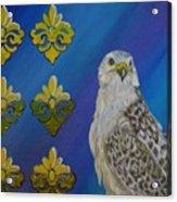 Gyr Falcon Acrylic Print