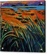Haida Gwaii Sunrise Acrylic Print by Faye Dietrich