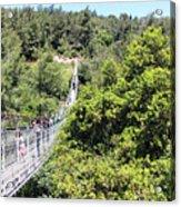 Haifa Hanging Bridge Acrylic Print