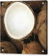 Half Coconut Acrylic Print by Brandon Tabiolo - Printscapes