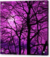Halloween Trees No 3 By Dm Carpenter Acrylic Print