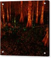 Halloween Woods Acrylic Print