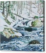 Hamburg Mountain Stream Acrylic Print