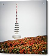 Hamburg - Tv Tower Acrylic Print