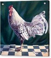 Hamburger Rooster Acrylic Print