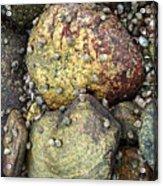 Hammonasset Rocks Acrylic Print