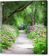 Hampton Park Path Acrylic Print