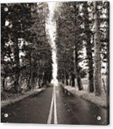 Hana Highway Acrylic Print