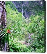 Hanakapiai Valley Acrylic Print