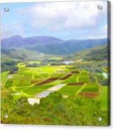 Hanalai Acrylic Print