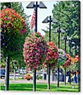 Hanging Flower Baskets In A Park Acrylic Print