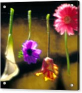 Hanging Flowers Acrylic Print