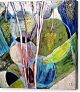 Hanging Fruit Acrylic Print