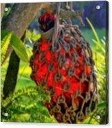 Hanging Red Bottle Garden Art Acrylic Print