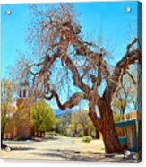 The Hanging Tree In Cerrillos In New Mexico  Acrylic Print