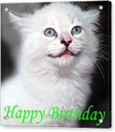 Happy Birthday Kitty Acrylic Print