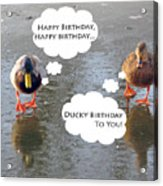 Happy Birthday To You Acrylic Print