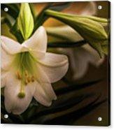 Happy Easter- 2 Acrylic Print