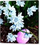 Happy Easter II Acrylic Print