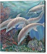 Happy Family - Dolphins Are Awesome Acrylic Print