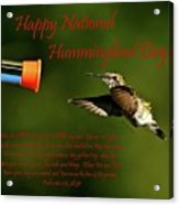 Happy Hummer Day Acrylic Print