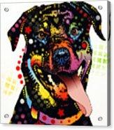 Happy Rottweiler Acrylic Print