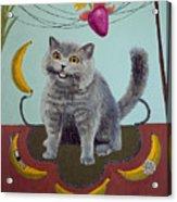 Happycat Can Has Banana Phone Acrylic Print