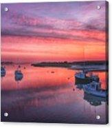Harbor Life Acrylic Print