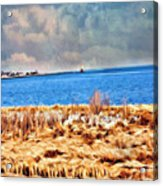 Harbor Of Tranquility Acrylic Print