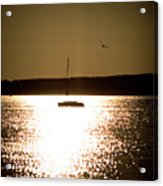 Harbor Silhouette Acrylic Print