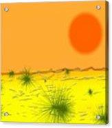 Hard Sun Of Desert Acrylic Print