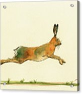 Hare Running Watercolor Painting Acrylic Print