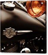 Harley Acrylic Print