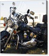 Harley Classic Acrylic Print by Elizabeth Chevalier