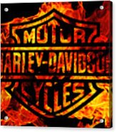Harley Davidson Logo Flames Acrylic Print