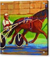 Harness Racing At Bluebonnets Acrylic Print