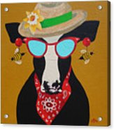 Harriet Honeybee Holstein Acrylic Print