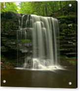 Harrison Wrights Forest Falls Acrylic Print