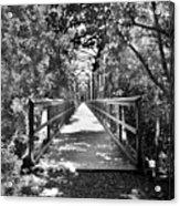 Harry Easterling Bridge Peak Sc Black And White Acrylic Print
