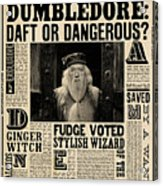 Harry Potter And The Half-blood Prince 2009 Acrylic Print