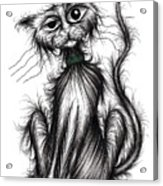 Harry The Cat Acrylic Print