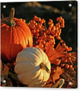 Harvest Colors Acrylic Print by Sandra Cunningham