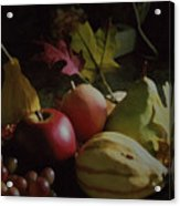 Harvest II Acrylic Print