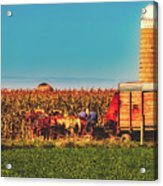 Harvest In Amish Country - Elkhart County, Indiana Acrylic Print