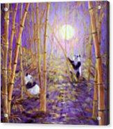 Harvest Moon Pandas  Acrylic Print