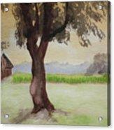 Hatch Farm Alto Michigan Acrylic Print