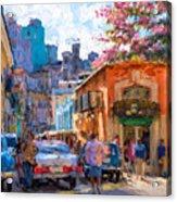 Havana In Bloom Acrylic Print