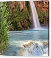 Havasu Falls Travertine Ledge Acrylic Print