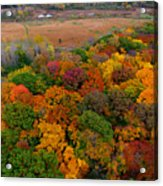 Havenwoods State Forest Acrylic Print