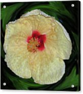 Hawaiian Hybiscus Acrylic Print
